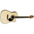 D6CE Acoustic Guitar